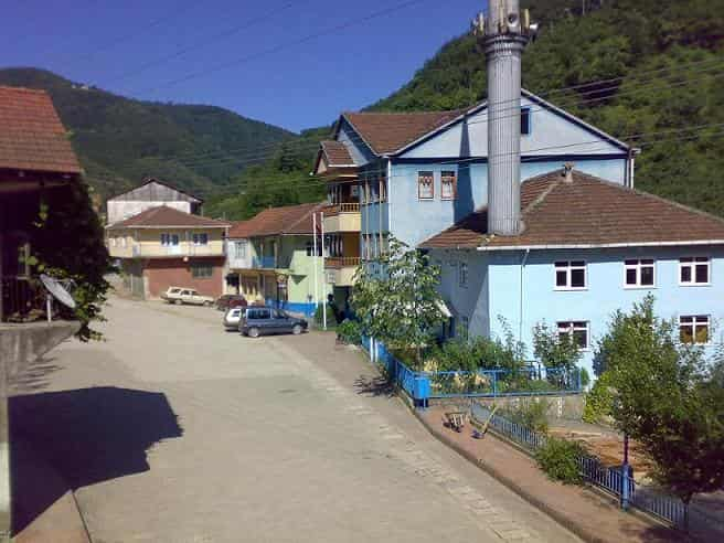 camiyani